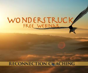 Wonderstruck Webinar @ Online via Zoom
